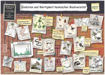 Evolution und Wertigkeit heimischer Biodiversität